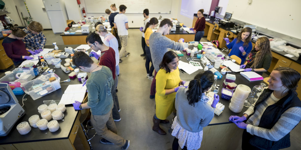 Students and a professor work in a biology lab