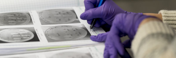 A student writes in a biology lab notebook