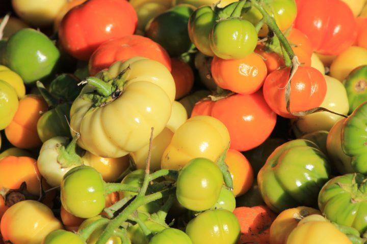 More colorful veggies